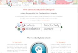 culture excellence website