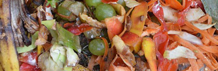 Reusing food waste