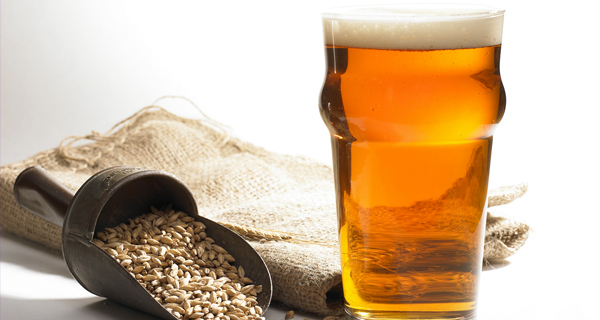 Brewing and malting training courses